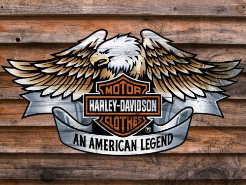 Placa Decorativa Vintage Retro Harley Davidson Legend PDV097