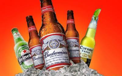 Placa Decorativa Budweiser Corona Heineken PDV268