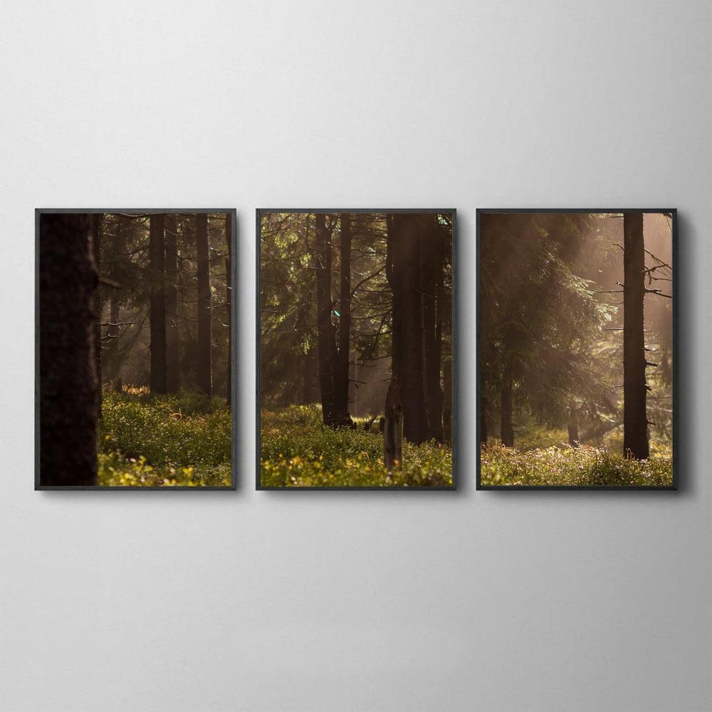 Conjunto de Quadros para Sala Quarto Luz na Floresta