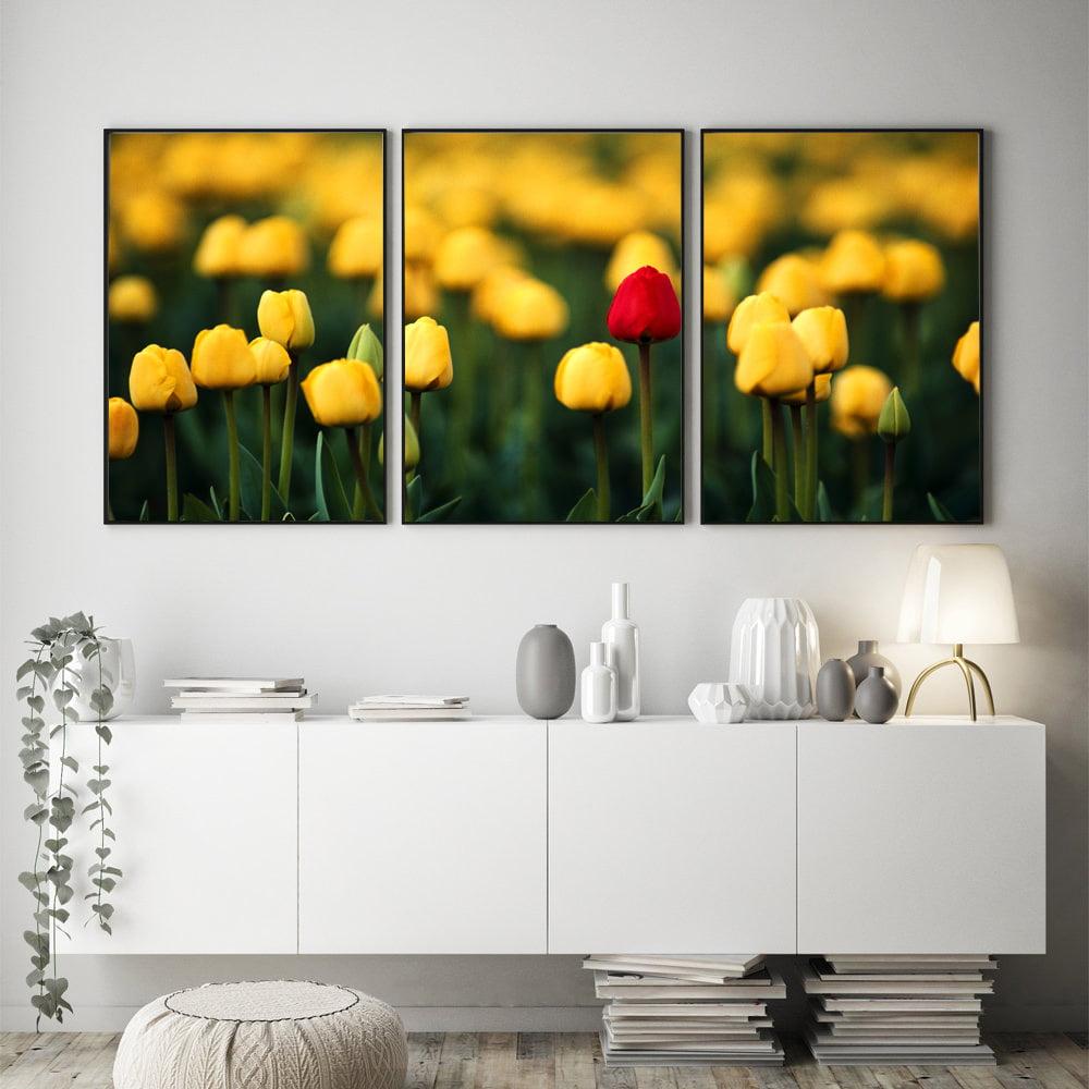 Kit Quadros Decorativos Tulipas Flores Vermelho Amarelo