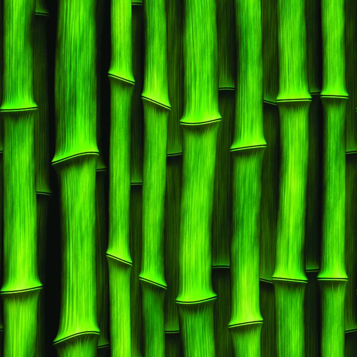 Papel de Parede Bambu Verde Adesivo Autocolante MD69