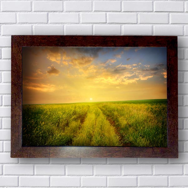 Quadro Decorativo Por do Sol no Campo