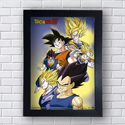 Placa Quadro Decorativo Dragon Ball Z