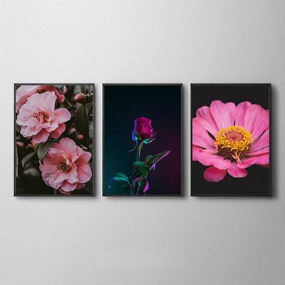 Conjunto De Quadros Decorativos Flores
