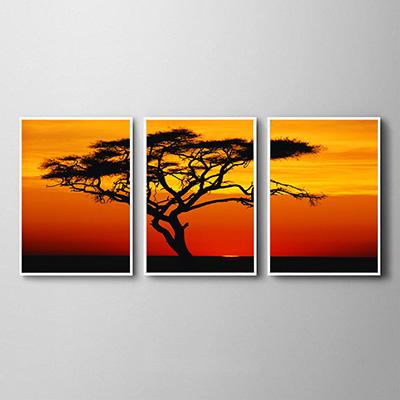 Kit Quadros Decorativos Árvore Seca Por do Sol