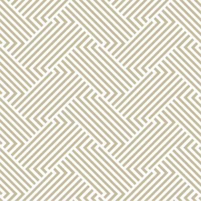 Papel de Parede Geometrico Linhas em beje
