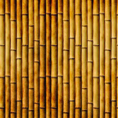 Papel de Parede Bambu Amarelo Adesivo Autocolante MD69