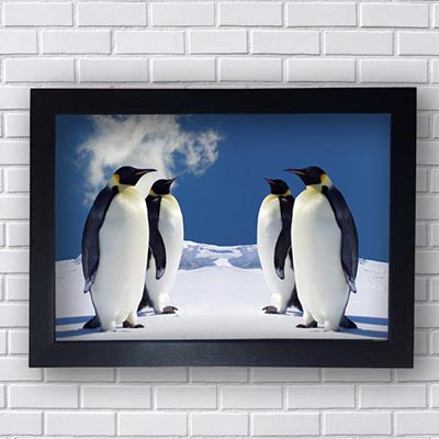Quadro de Pinguins
