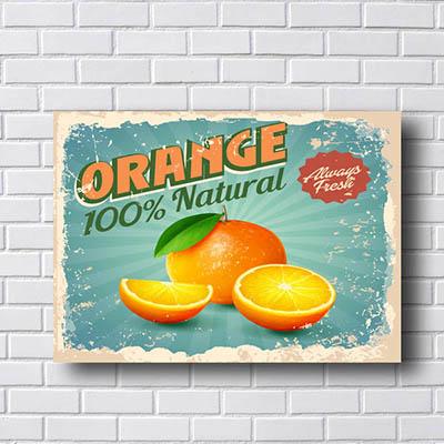 Quadro Decorativo Orange 100% Natural