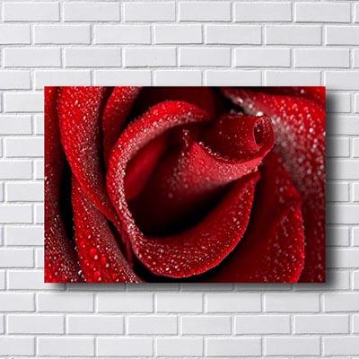 Quadro Flores Rosa