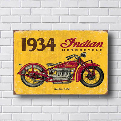 Quadro Decorativo Indian